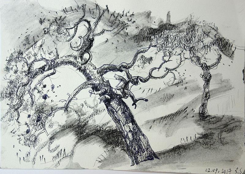 2017, Stift, Kreide  auf Papier, 21x29,5